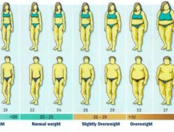 What is Body Mass Index (BMI) ? A Quiz to Test Your Knowledge