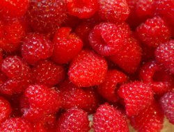 Raspberry: 10 Question Quiz