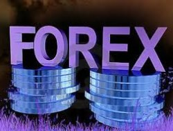 Forex management – Quiz to check your knowledge!